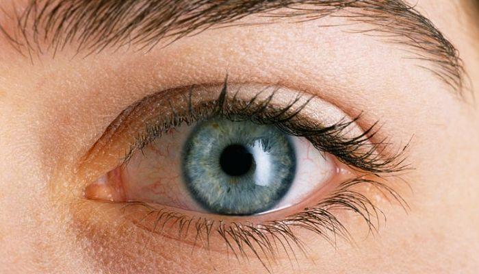 La leche de almendras es rica en varias vitaminas, incluida la vitamina A, que es esencial para el buen funcionamiento de los ojos.