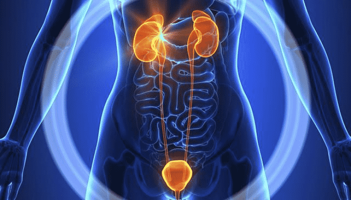 El jugo de toronja es bastante rico en potasio y vitamina C, por lo que es uno de los mejores tratamientos en los trastorno urinario