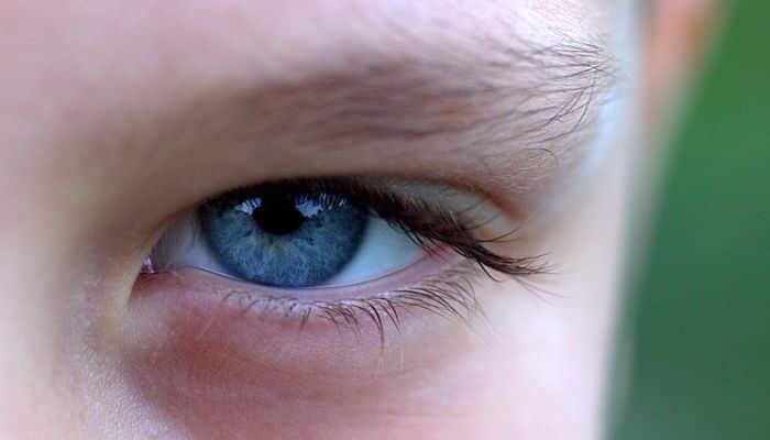 El amaranto disminuye el estrés oxidativo en el sistema ocular que conduce a la visión sana y fuerte.
