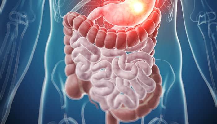 Otro de los beneficios delcacaoes que tiene la capacidad de ayudar a mejorar el riñón y estimular la función intestinal