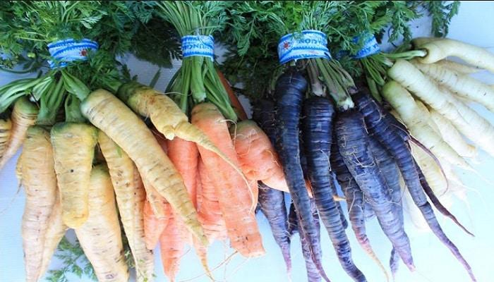 conoce los beneficios de comer zanahorias