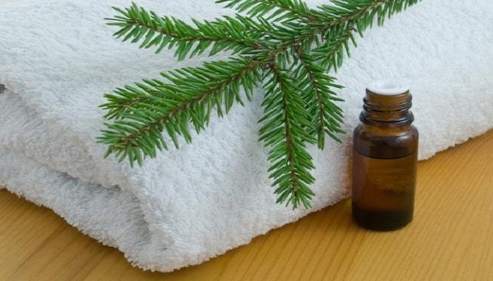 beneficios del aceite del árbol del té