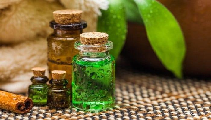 Los usos y beneficios del aceite del árbol del té