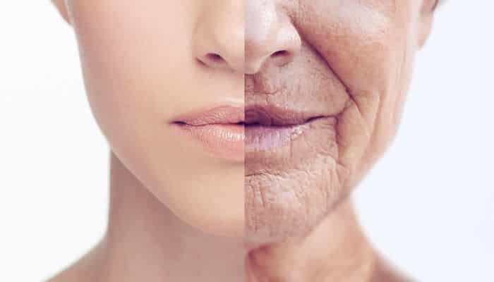 Gazpacho ralentiza el proceso de envejecimiento