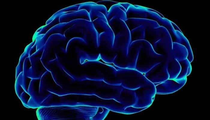 La vitamina B12 mejora la memoria
