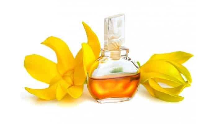 beneficios del aceite esencial de ylang-ylang