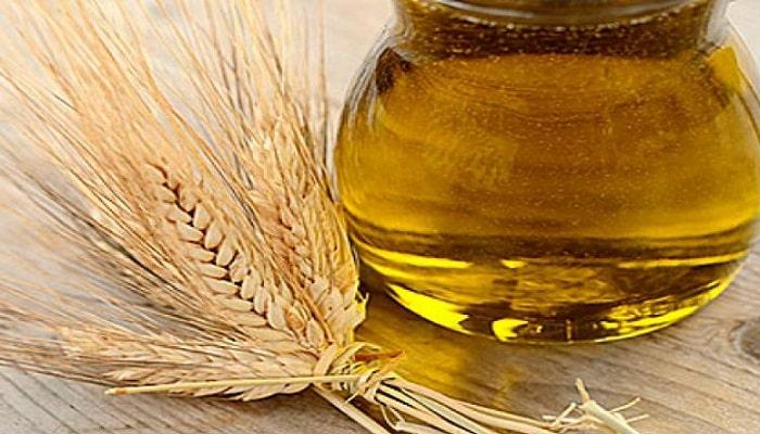 beneficios del aceite de germen de trigo