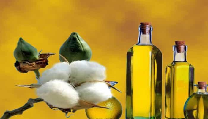 beneficios del aceite de semilla de algodón