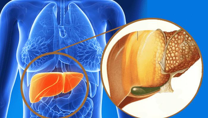 los acidos de omega-3