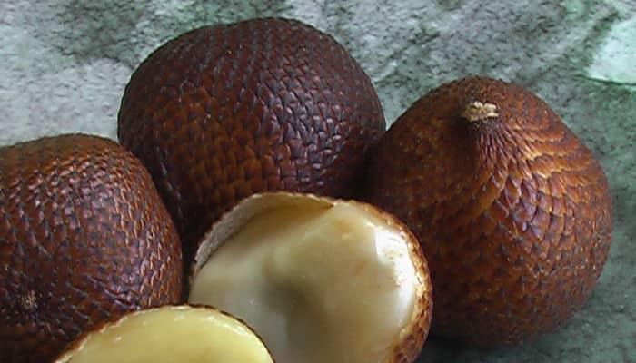 fruta de serpiente