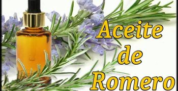 el aceite esencial de romero
