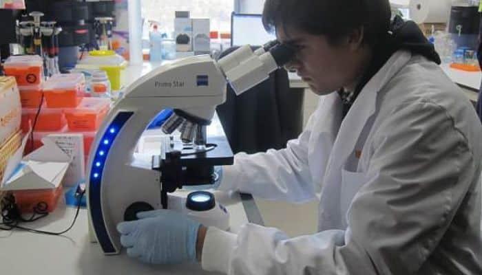 la terapia con celulas madre