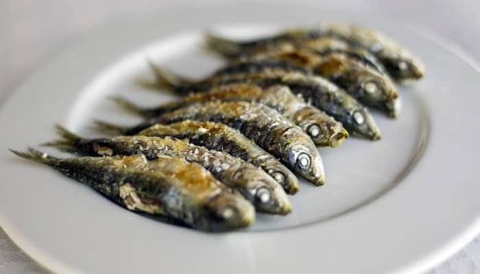 beneficios de comer sardinas
