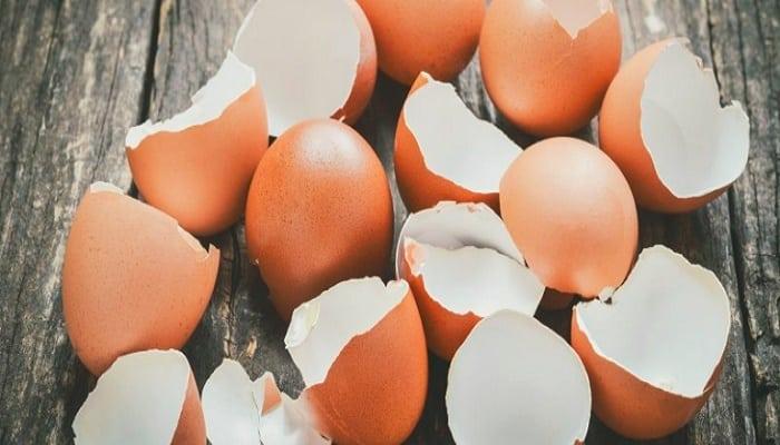 beneficios de las cáscaras de huevo