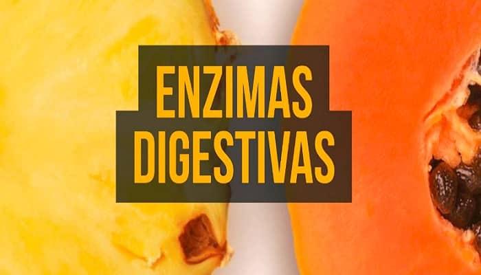 beneficios de las enzimas digestivas
