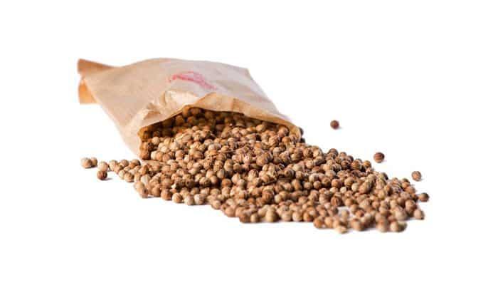 semillas de cilantro