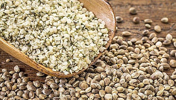 las semillas de cáñamo