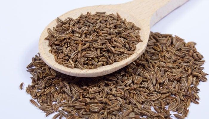 semillas de palillo