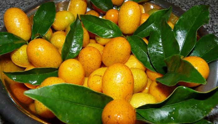 naranjitas