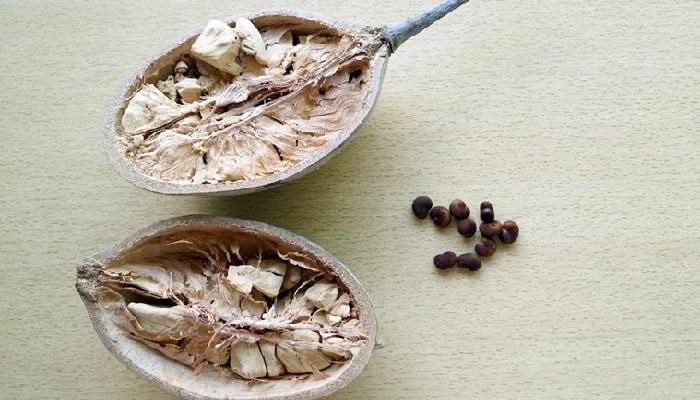 Beneficios De La Fruta Baobab