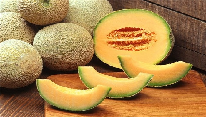 Beneficios Del Melón Cantalupo