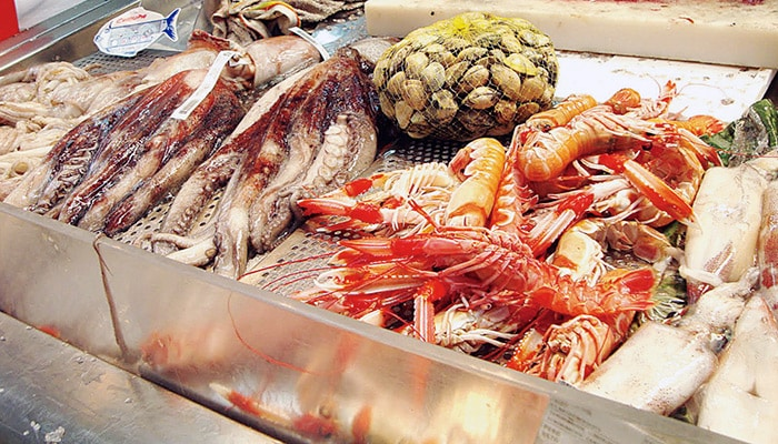 comer calamar
