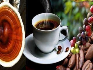 café de hongos