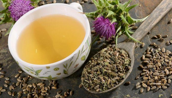 té de cardo mariano