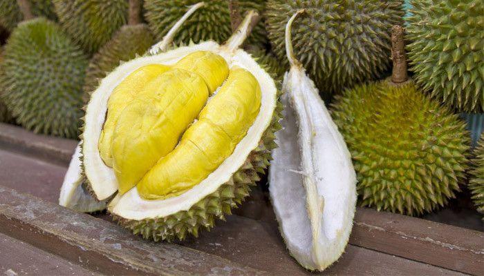 el durián