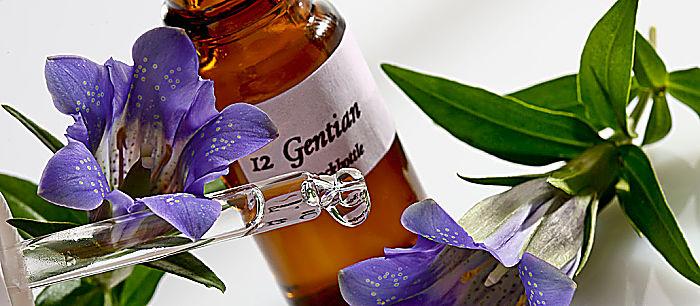 Beneficios Del Consumo De Flores De Bach